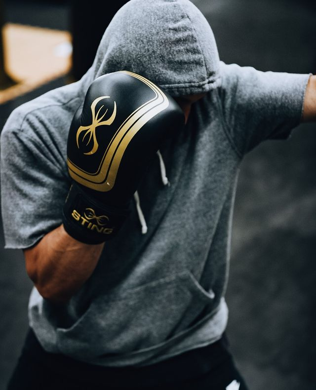 Buy Boxing Gloves by Sting Sports Online at Gym Ready - Australia